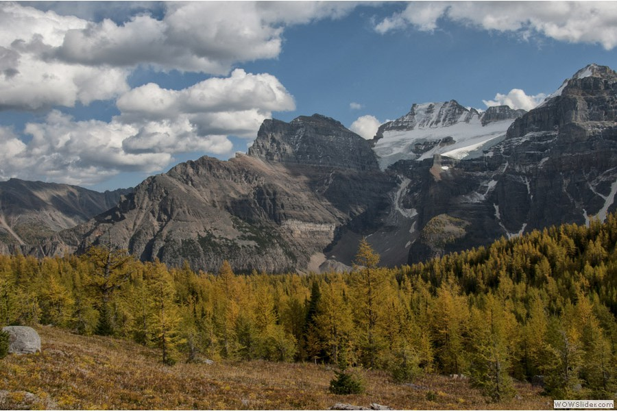 Larch Valley